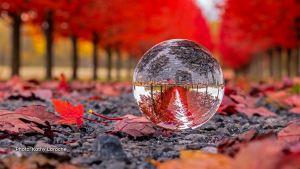 Red maple lined laneway with lensball. (Kathy Laroche/CTV Viewer)