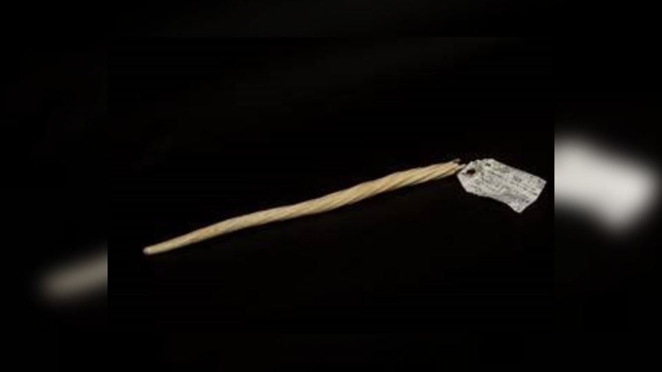 A narwhal tusk that was donated to a Goodwill store in northwest Calgary this summer will soon be gifted to the Arctic Institute of North America (photo: Hesam Rezaei)