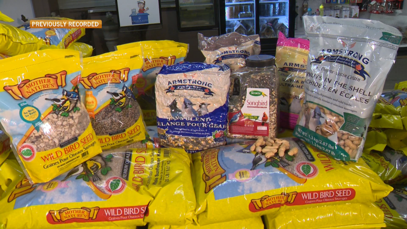 The experts at Golden Acre have supplies including special birdseed to keep birds returning to your yard year round