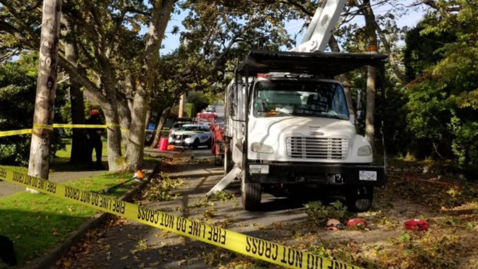 Tree-pruning work was underway on McNeill Avenue near Byng Street Tuesday morning. (Oak Bay Police Department)
