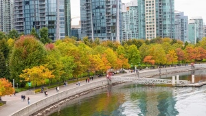 Fall colours captured on the Coal Harbour Seawall in Vancouver in October 2020. (Submitted by Diones Lago)