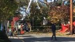 Oak Bay tree-pruning