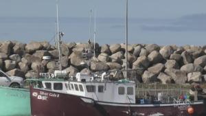 Mi'kmaw fishers