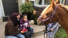Vanessa and Criztina Muscat getting a home visit from one of WETRA's ponys in Windsor, Ont. on Tuesday, Oct. 20 2020. (Angelo Aversa/CTV Windsor)
