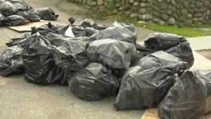 Asbestos dumped in back alley