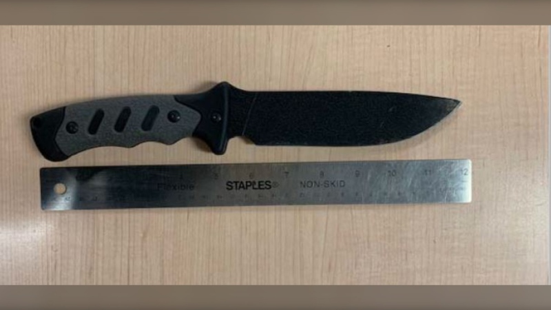 Supplied image of the knife seized by police.