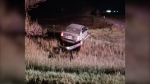 Brandon RCMP shared this photo of a vehicle in a ditch that crashed after travelling at a high rate of speed on Oct. 20. The driver of the vehicle, a 17-year-old male, was ticketed and had his licence suspended at the scene. (source: Manitoba RCMP)