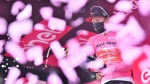 Wilco Kelderman of The Netherlands wears the pink jersey of the race overall leader as he celebrates during the podium ceremony for the 18th stage of the Giro d'Italia cycling race from Pinzolo to Laghi di Cancano, northern Italy, on Oct. 22, 2020. (Massimo Paolone / LaPresse via AP)