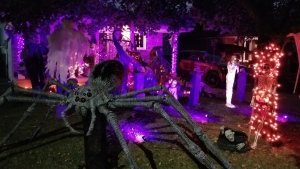 Homes around Windsor-Essex decorated for Halloween. (Submitted to CTV Windsor)