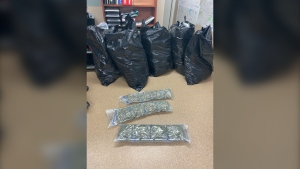 An officer found five large garbage bags containing 99 pounds of cannabis during a traffic stop on Highway 7 west of Kindersley, according to the RCMP. (RCMP)