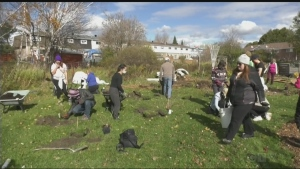 Sudbury Shared Harvest has plans for further expansion of the city's edible forest gardens to tackle food insecurity. Tony Ryma reports.