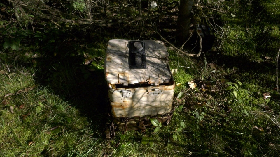 While attending the crash scene, police also spotted an old safe that had been abandoned in the bush, which appeared to have been possibly stolen. It was cracked open, but had a chain wrapped around it as if it had been pulled out of a secure location. (CTV)