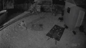 Caught on video: North Bay homeowner stops thief