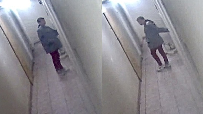 Police believe this woman might have information about a fire in Red Deer on Aug. 24. (Source: RCMP)