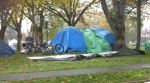 Tents are seen in Central Park in the North Park neighbourhood of Victoria. (CTV)