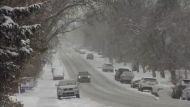 Calgarians adjust to snowy conditions