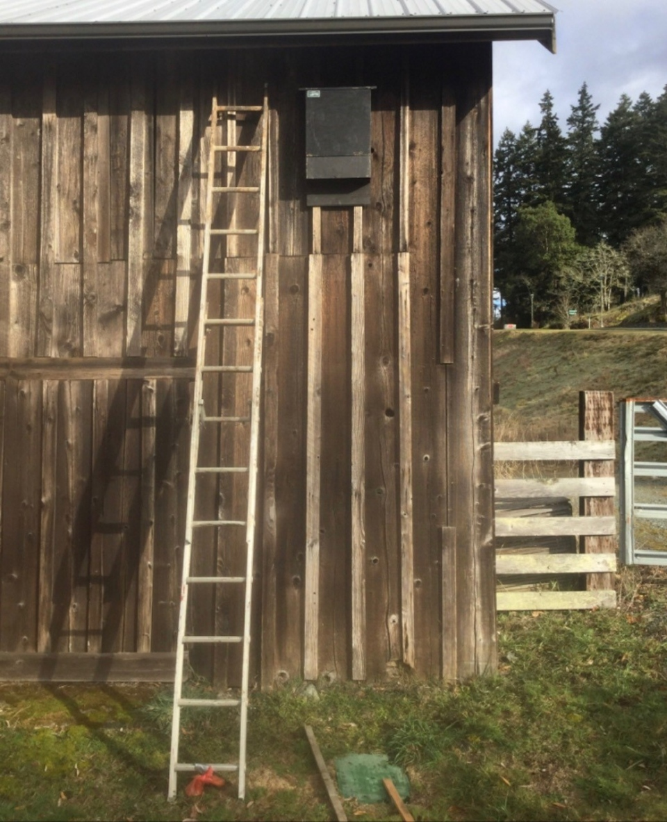 Bat box on barn. Photo by Habitat Acquisition Trust