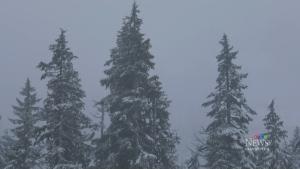 Early season snow hits South Coast