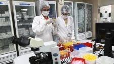 COVID, coronavirus cases in Ontario
