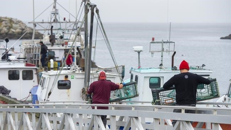 Indigenous fishermen carry lobster traps in Saulnierville, N.S. on Wednesday, Oct. 21, 2020. THE CANADIAN PRESS /Andrew Vaughan
