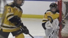 Intercity minor hockey games put on pause