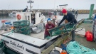 Indigenous lobster boats are geared up in Saulnierville, N.S. on Wednesday, Oct. 21, 2020. Tensions remain high over an Indigenous-led lobster fishery that has been the source of conflict with non-Indigenous fishermen. THE CANADIAN PRESS /Andrew Vaughan