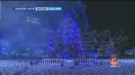 COVID-19 won't stop Boston tree tradition