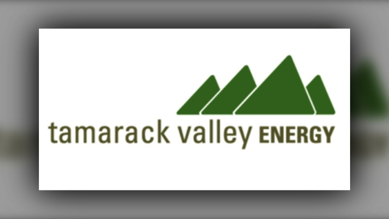Tamarack Acquisition Corp. has been ordered to pay $80,000 by the Alberta Energy Regulator