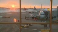 EIA announces flights to some sunny destinations