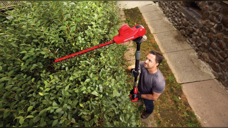 Fall pruning tools and tips