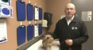 Bill Thorn shares newest pet of the week