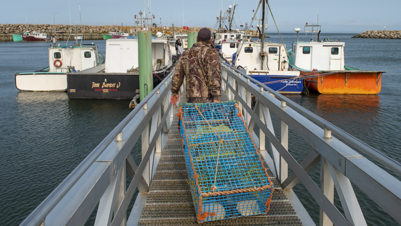 Members of the Sipekne'katik First Nation load lobster traps on the wharf in Saulnierville, N.S., after launching its own self-regulated fishery on Thursday, Sept. 17, 2020. When Jaime Battiste was in his early 20s, cable news channels were full of images of Mi'kmaq fishermen in New Brunswick battling federal fisheries officers over seized lobster traps. THE CANADIAN PRESS/Andrew Vaughan