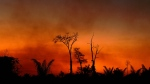 Smoke rises from a burnt area of land at the Xingu Indigenous Park, Mato Grosso state, Brazil, in the Amazon basin, on August 6, 2020. (AFP)