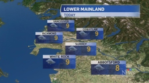 Tuesday's weather forecast