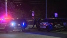Shots fired on busy Kitchener street