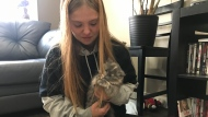 The kitten, now named Luna, was found on Thursday evening by 15-year-old Marissa Riche. (CTV News)