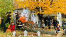 Picture This: Halloween Decorations