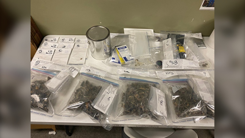 A photo from Surrey RCMP shows what Mounties say is 451 grams of psilocybin, as well as 'a number of items consistent with drug trafficking.'