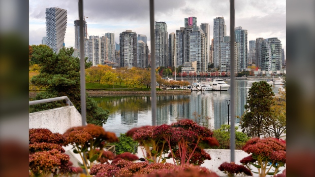 Autumn in False Creek, Vancouver, captured in October 2020. (submitted / Chellyn)