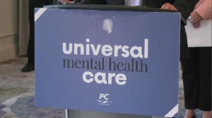 The Tories want to create what they describe as universal mental health care and Nova Scotia's Progressive Conservative leader Tim Houston unveiled the sweeping plan Wednesday to tackle a growing mental health epidemic in the province.