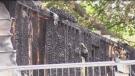 Police investigating 10 suspicious fires