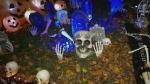 Spooktacular Halloween lawn display