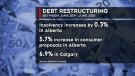 Growing numbers of Albertans and businesses are going into debt. Stephanie Thomas reports
