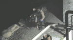 Nova Scotia RCMP have released a video and two photos of 'persons of interest' in relation to the arson that occurred at a fish plant in Middle West Pubnico earlier this month.