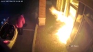Flames can be seen shooting from the front door of Lisa Carr's law office in Vaughan, Ont.