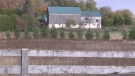 Thousands of bank barns were demolished, but a resurgence in small farms means some structures were saved (Scott Miller / CTV News)