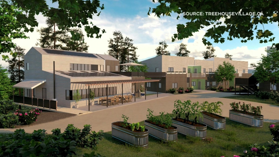 A rendering of what a proposed Cohousing community near Bridgewater, N.S., could look like. (COURTESY TREEHOUSEVILLAGE.CA)
