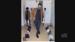 BC Lion passionate about fashion