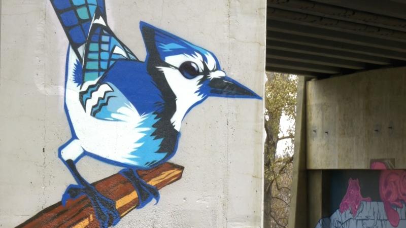 Colourful murals have been completed under the James MacDonald Bridge.