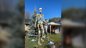 Trick-or-treaters have the green light to head out on Halloween in the Ottawa Valley. (Dylan Dyson/CTV News Ottawa)